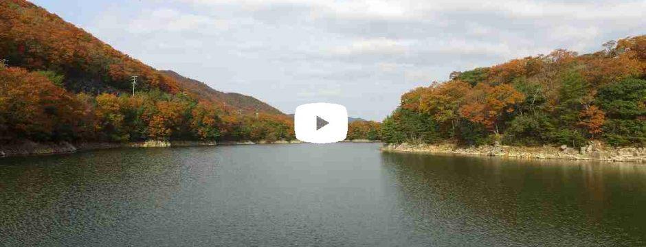 【動画】 紅葉 大川瀬
