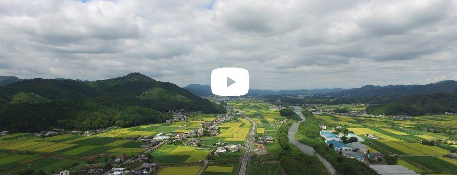 【動画】 高城山八景 城東支所
