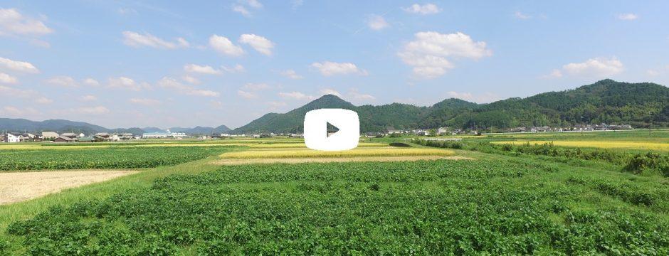 【動画】 高城山八景 池上