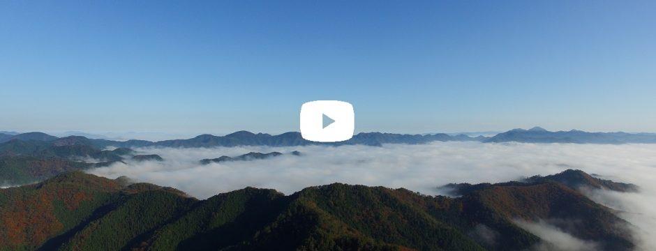 【動画】雲海 味間奥